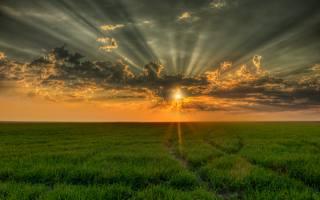 pole, посевы, západ slunce, nebe, mraky, krajina