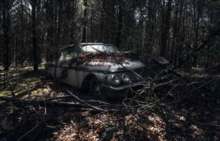 forest, machine, scrap