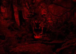 тигр, щелепи, ікла, Червоний