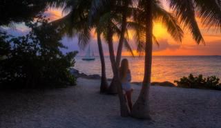 západ slunce, Maledivy, palmové, břeh