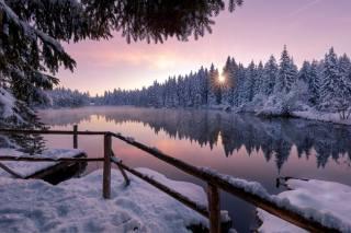 зима, сніг, дерева, природа, озеро, природа