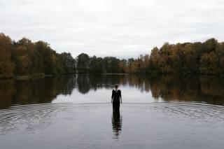 rybník, stromy, holka, podzim