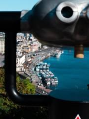 місто, дорога, річка, яхти