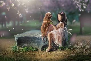 Dmitry Usanin, природа, дівчинка, весна, дитина, сад, пелюстки, камінь, Тварина, собака, пес