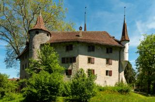 Switzerland, Landshut Castle Utzenstorf, The BUSHES