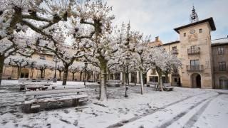 зима, деревья, снег, здания, холод