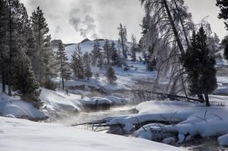 снег, ручей, деревья, зима