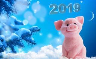 свято, Новий рік, 2019, цифрове мистецтво, ялинка, сніг, гілки, порося