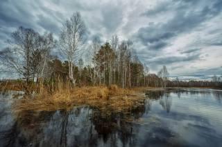весна, половодье, река, фото, Николай Шевченко