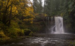 autumn, waterfall, river, oregon, Silver Falls State Park, Upper North Falls, Silver, creek, trees, nature