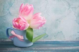 desky, hrnek, květiny, na přídi