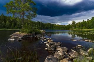 небо, озеро, острівець, дерева