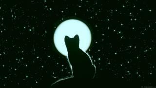 ночь, луна, звёзды, силуэт