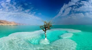 Ізраїль, море, небо, Dead Sea, Neve Zohar, дерева, хмари, природа