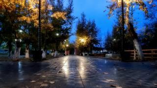 světla, listy, podzim, večer, park