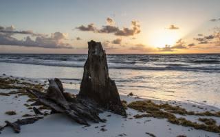 rock, the beach, sunset